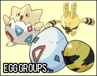 Pokemon Black and White Egg Groups